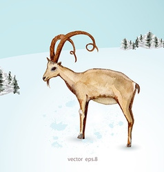 Watercolor painting of goat in winter landscape vector