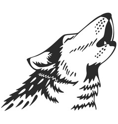 Wolfs heads vector