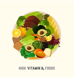 Vitamin b9 in food vector