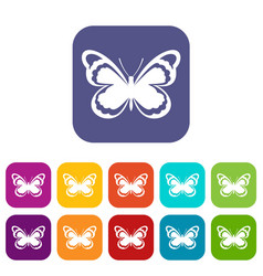Small butterfly icons set vector