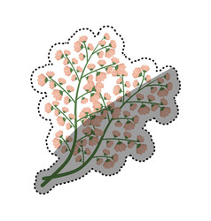 beautiful flowers ornament vector image vector image