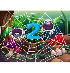 Number two with two spiders on web vector