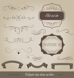 Set calligraphic design elements and page decorati vector