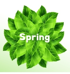 Spring with bunch of green leaves vector