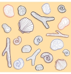 Shells and stones vector