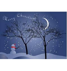 winter night sky and snowman vector image vector image