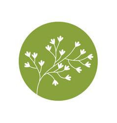 flower garden natural icon vector image