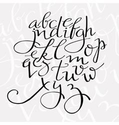 Flourish script alphabet vector