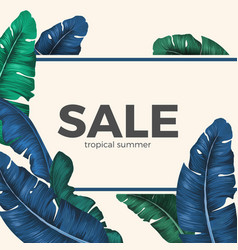 sale inscription hidden in palm tree leaves vector image vector image