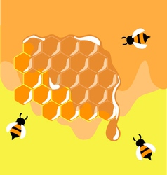 Three funny bees on honeycells vector image