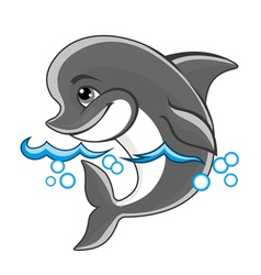 beautiful cheerful dolphin vector image