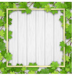 frame maple tree on wooden background vector image
