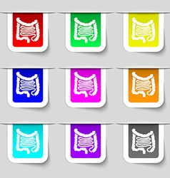Intestines icon sign Set of multicolored modern vector image