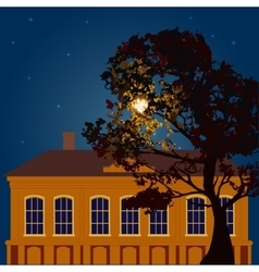 Moonlit night in the city vector