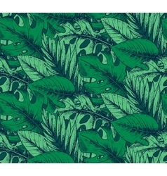 Seamless pattern with hand drawn tropical plants vector image vector image