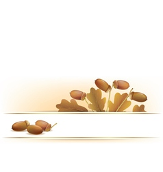 Banner with acorns vector