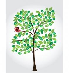 bird on tree vector image vector image