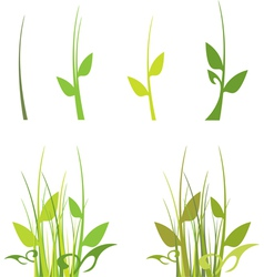 Set of green grass vector