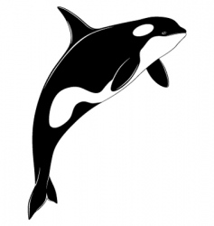 Killer whale tattoo vector