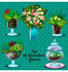 Collection of bouquets in decorative glass vases vector