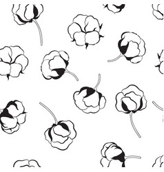 floral seamless pattern with flower cotton nature vector image