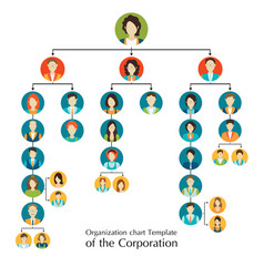 Organizational chart template of the corporation vector
