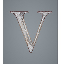 Abstract letter V vector image