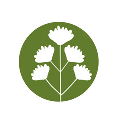 Flower delicate natural icon vector