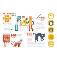 Veterinary care infographic vector