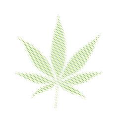Cannabis marijuana weed vector