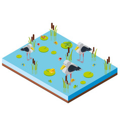 pond scene with birds in 3d design vector image vector image