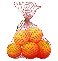 A pack of ripe oranges vector