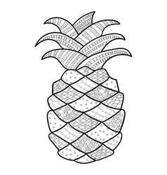 Pineapple adult coloring page vector