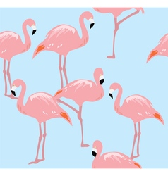 Flamingos two b vector
