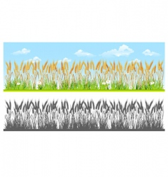 landscape with wheat vector image
