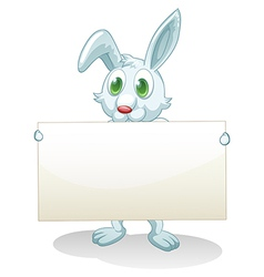 A bunny holding an empty banner vector