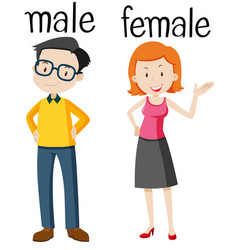 Opposite wordcard for male and female vector