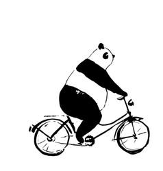 panda bear on bicycle vector image