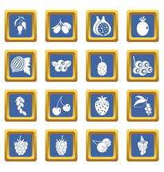 berries icons set blue vector image vector image