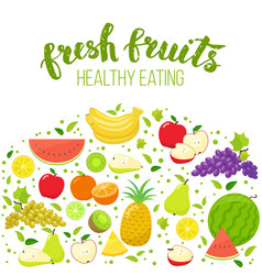 colorful fruits vector image vector image