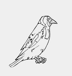 hand-drawn pencil graphics small bird engraving vector image vector image