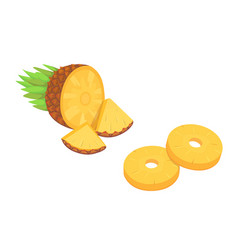 composition of cartoon pineapple on white vector image