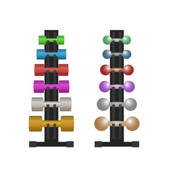 Stand with a dumbbell set vector