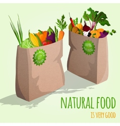 Vegetables in bags concept vector image vector image