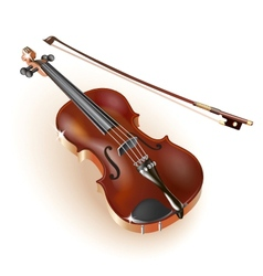 Classical violin on white background vector