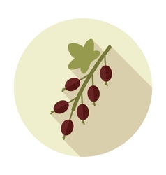 Currant flat icon with long shadow vector