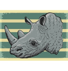 Vintage background with rhino vector