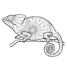 Zentangle style chameleon stylized animal vector