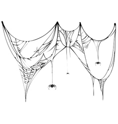 Black spider and torn web on white background vector