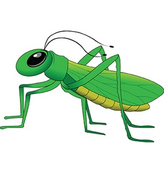 Cartoon grasshopper vector